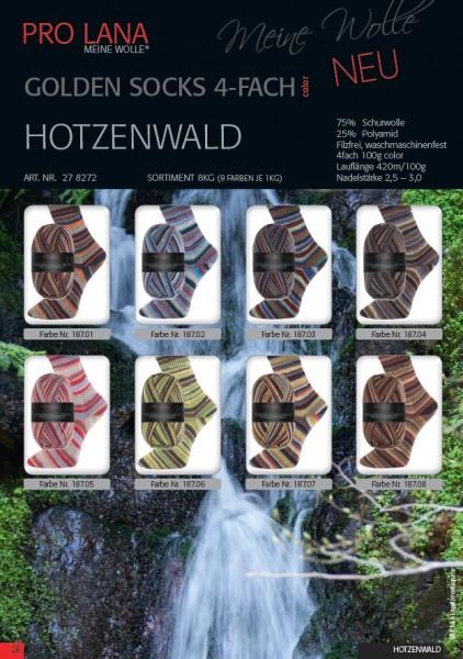 100g Sockenwolle Pro Lana Hotzenwald