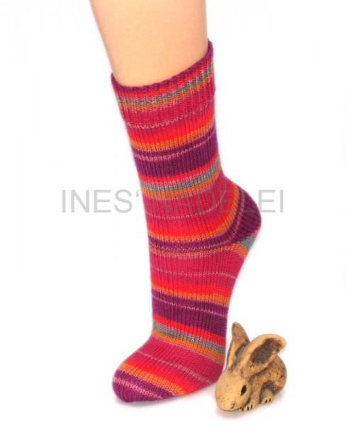 Socken Gr. 38/39 aus Regia Canadian Fb. 4737